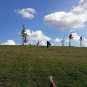 Vylezly jsme na kopec a válely sudy dolů
