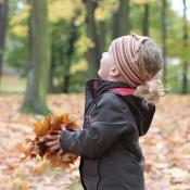 hrátky v listí 2